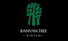 case solution banyan tree developing a powerful service brand Businesses create strategic alliances for different reasons in this lesson, you'll learn what a strategic alliance is and explore its advantages.