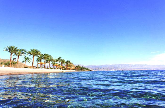 dream beach отзывы шарм: