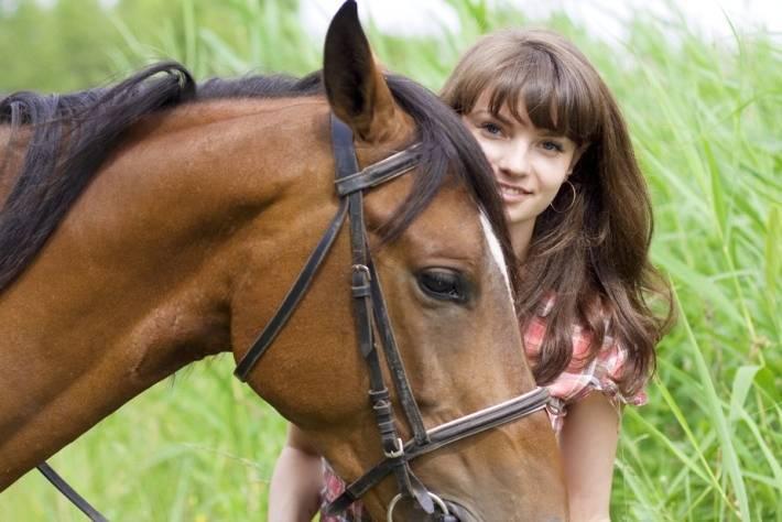 chronischer durchfall pferd
