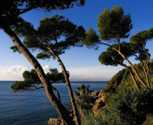 Alva Park Costa Brava(ex.Alva Park Resort & Spa)
