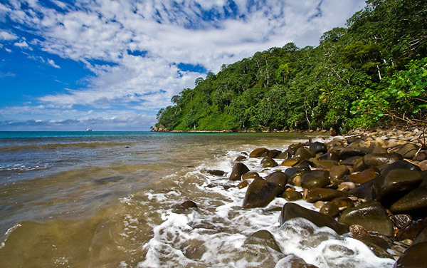true paradise found in the islands of costa rica Each of the checklists is based on a single taxonomic source that covers all species in a group on a global basis for the sake of consistency, each of these taxonomic sources is used as the final authority on the validity of species regardless of subsequent taxonomic changes or new discoveries.